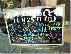 DSC_01491